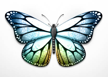 resultat-effet-papillon-anneaux-ps.jpg